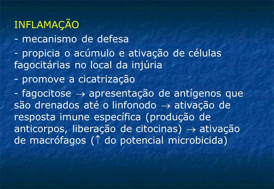 INFLAMAÇÃO - mecanismo de defesa. - propicia o acúmulo e ativação de células fagocitárias no local da injúria.