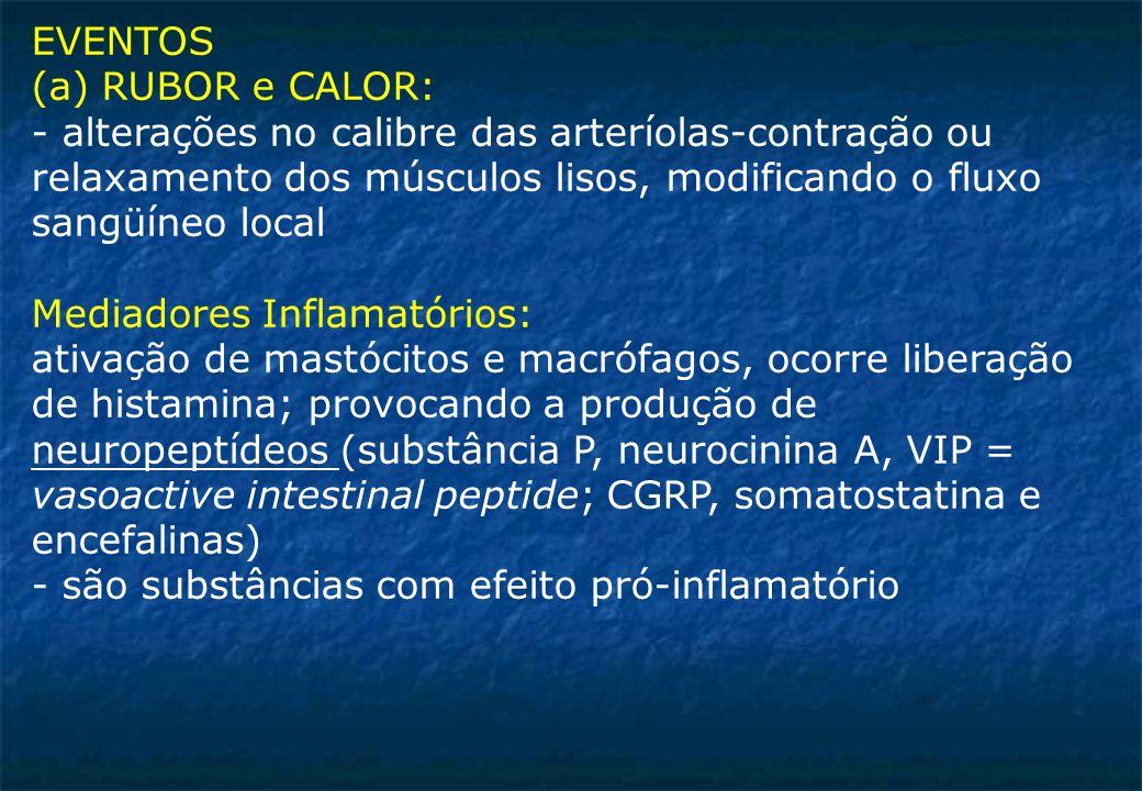 EVENTOS (a) RUBOR e CALOR: - alterações no calibre das arteríolas-contração ou. relaxamento dos músculos lisos, modificando o fluxo.