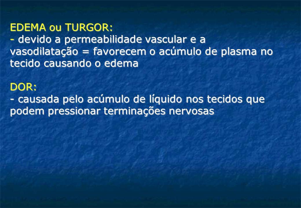 EDEMA ou TURGOR: - devido a permeabilidade vascular e a. vasodilatação = favorecem o acúmulo de plasma no.