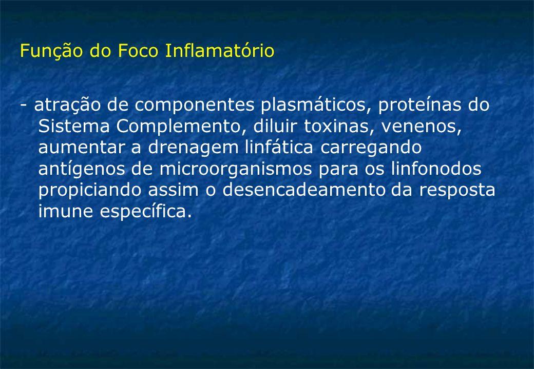 Função do Foco Inflamatório