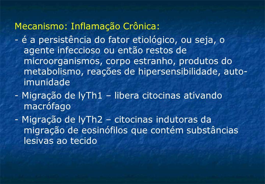 Mecanismo: Inflamação Crônica: