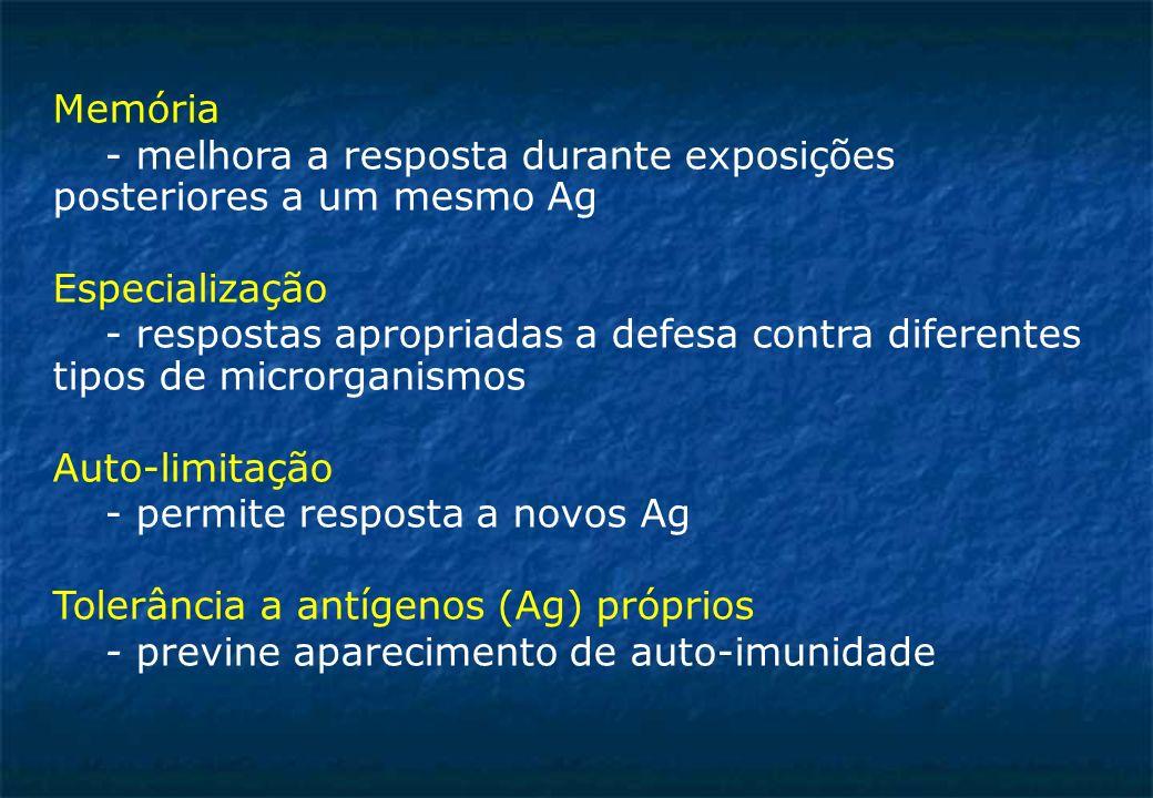 Memória - melhora a resposta durante exposições posteriores a um mesmo Ag. Especialização.