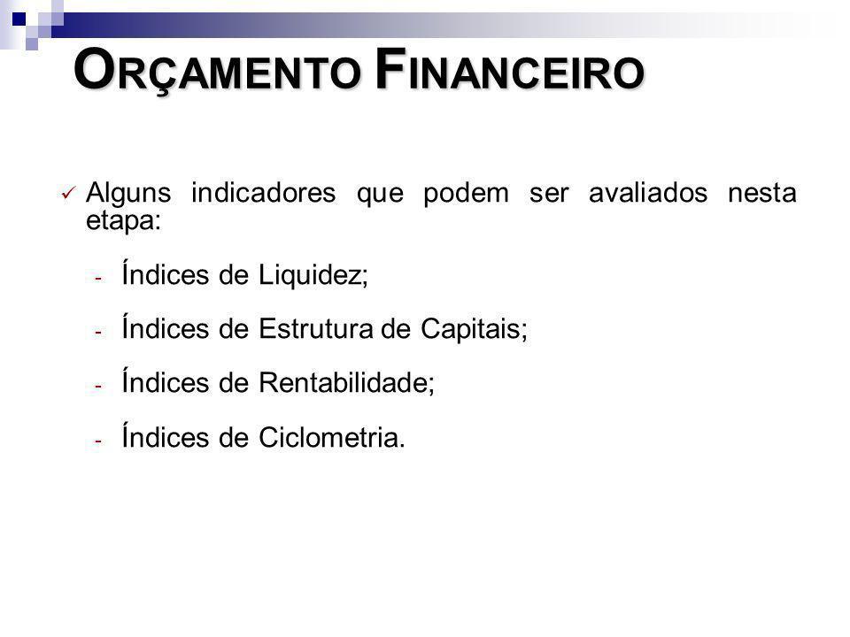 ORÇAMENTO FINANCEIROAlguns indicadores que podem ser avaliados nesta etapa: Índices de Liquidez; Índices de Estrutura de Capitais;