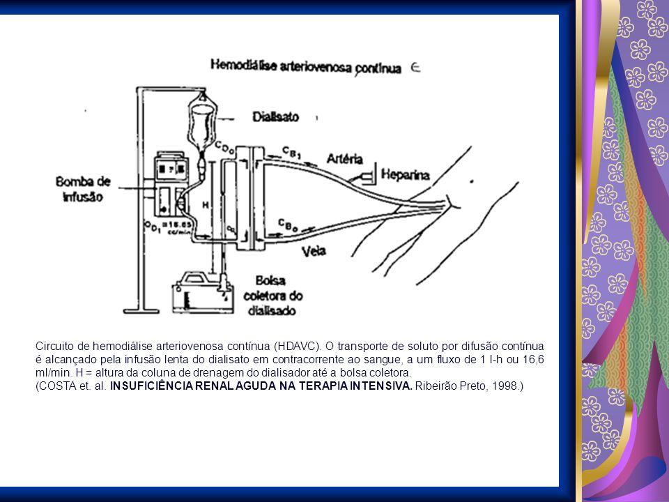 Circuito de hemodiálise arteriovenosa contínua (HDAVC)
