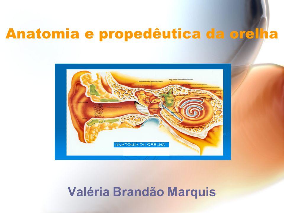 Anatomia e propedêutica da orelha