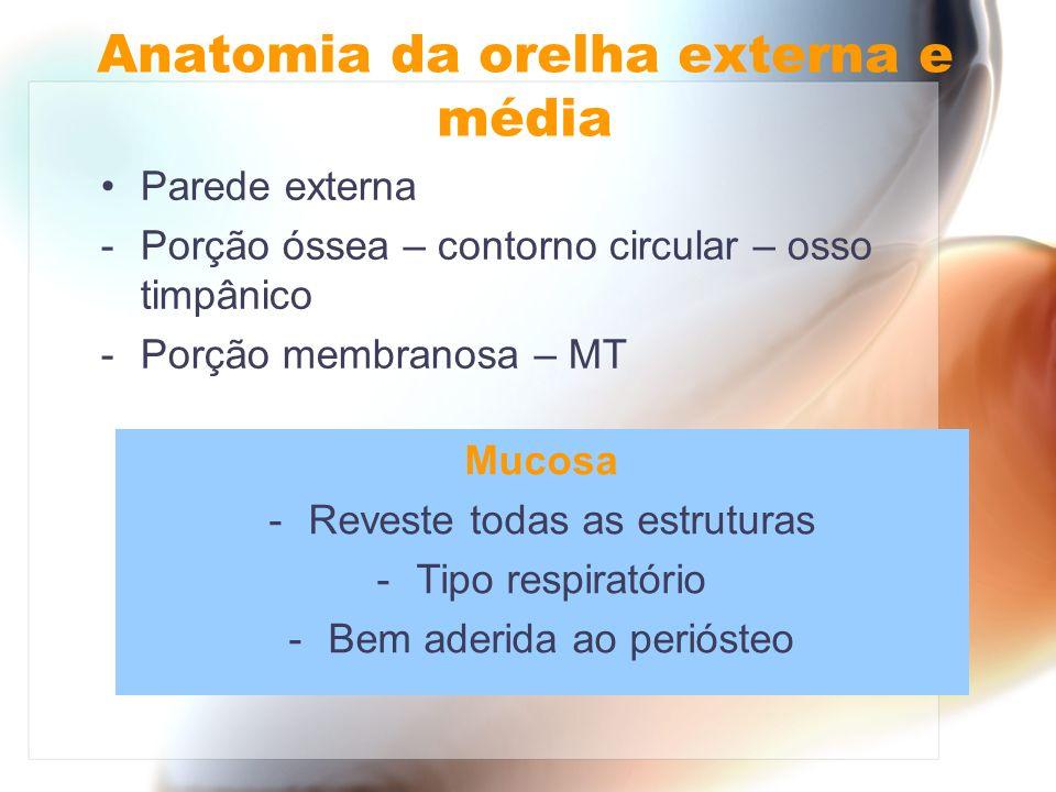 Anatomia da orelha externa e média