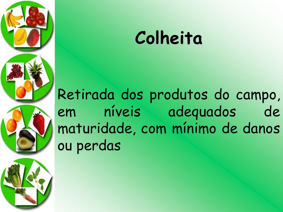 Colheita Retirada dos produtos do campo, em níveis adequados de maturidade, com mínimo de danos ou perdas.