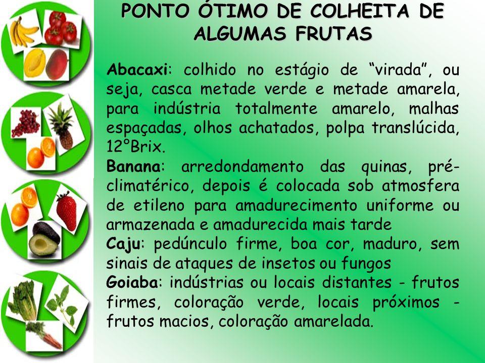 PONTO ÓTIMO DE COLHEITA DE
