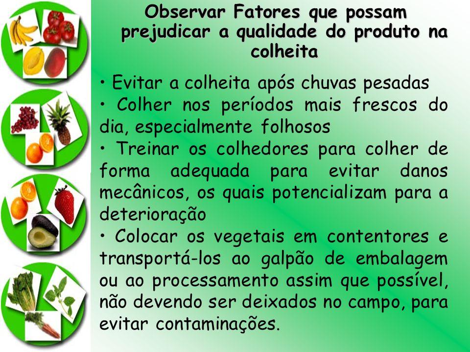 Observar Fatores que possam prejudicar a qualidade do produto na colheita