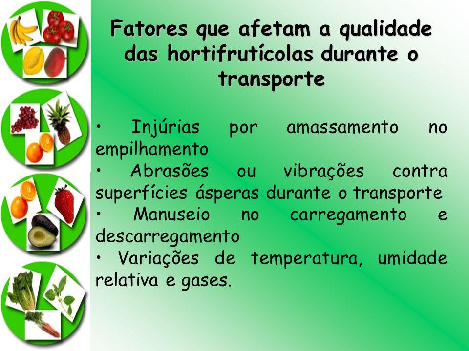 Fatores que afetam a qualidade das hortifrutícolas durante o transporte