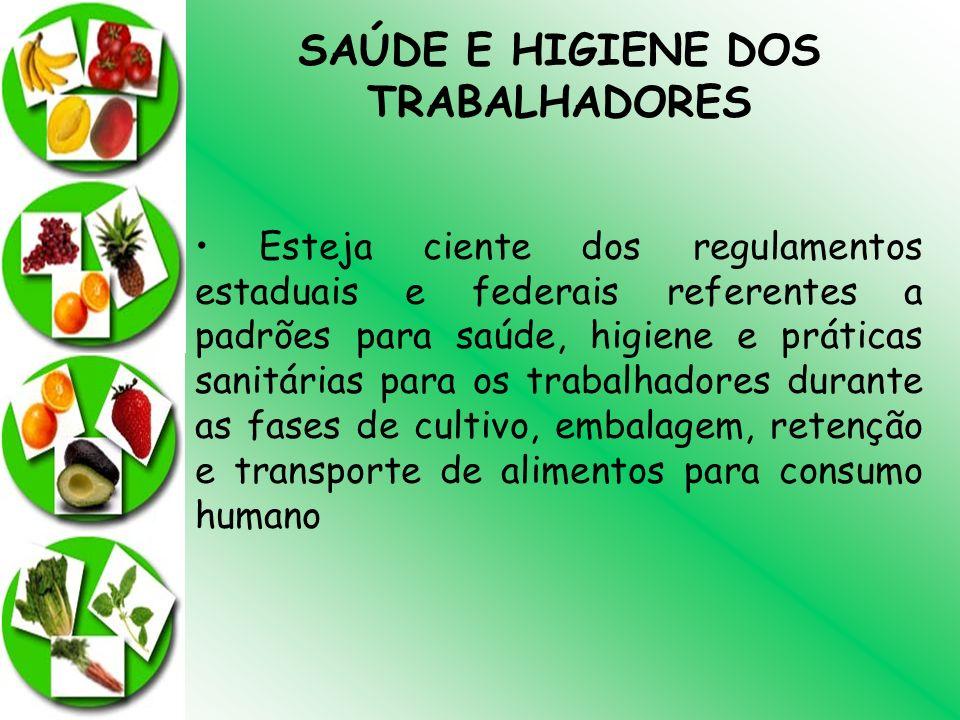 SAÚDE E HIGIENE DOS TRABALHADORES