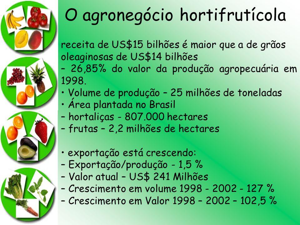 O agronegócio hortifrutícola