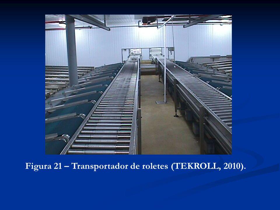 Figura 21 – Transportador de roletes (TEKROLL, 2010).