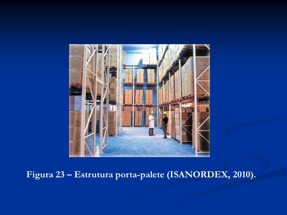 Figura 23 – Estrutura porta-palete (ISANORDEX, 2010).