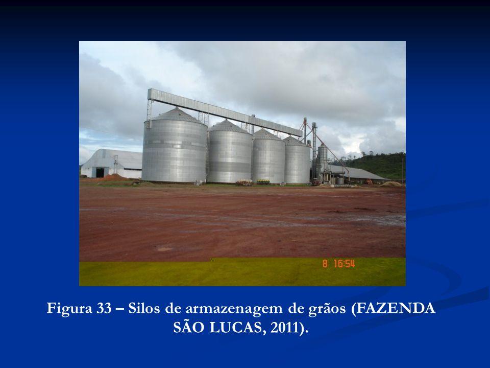 Figura 33 – Silos de armazenagem de grãos (FAZENDA SÃO LUCAS, 2011).