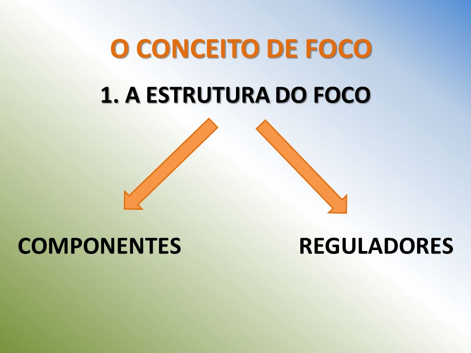 1. A ESTRUTURA DO FOCO COMPONENTES REGULADORES