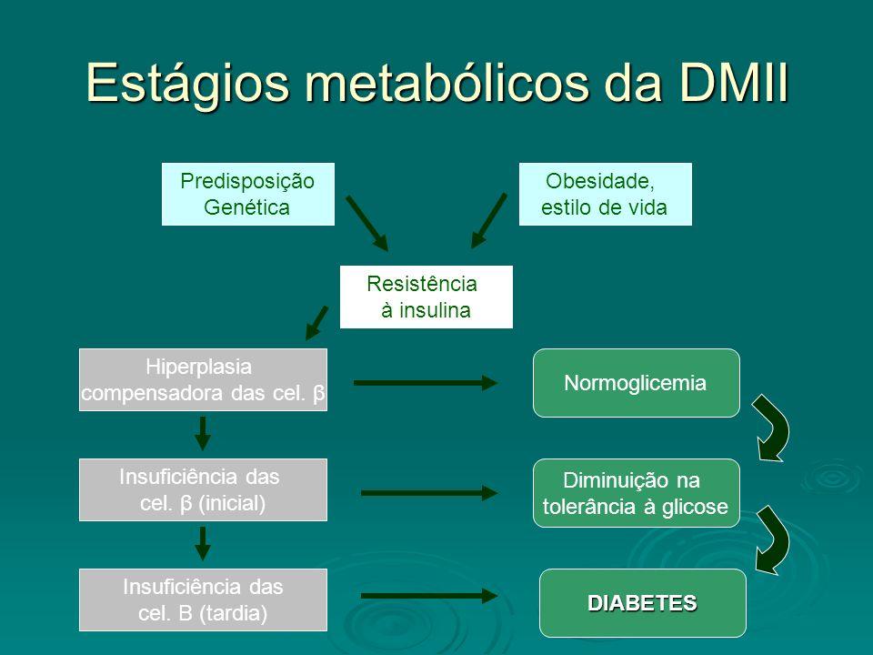 Estágios metabólicos da DMII