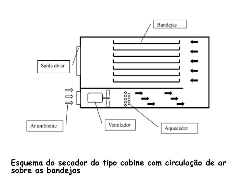 Esquema do secador do tipo cabine com circulação de ar sobre as bandejas