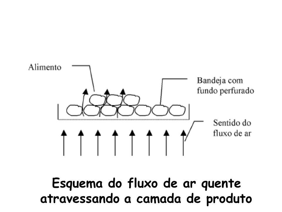 Esquema do fluxo de ar quente atravessando a camada de produto