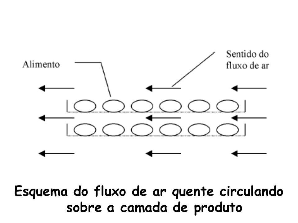 Esquema do fluxo de ar quente circulando sobre a camada de produto