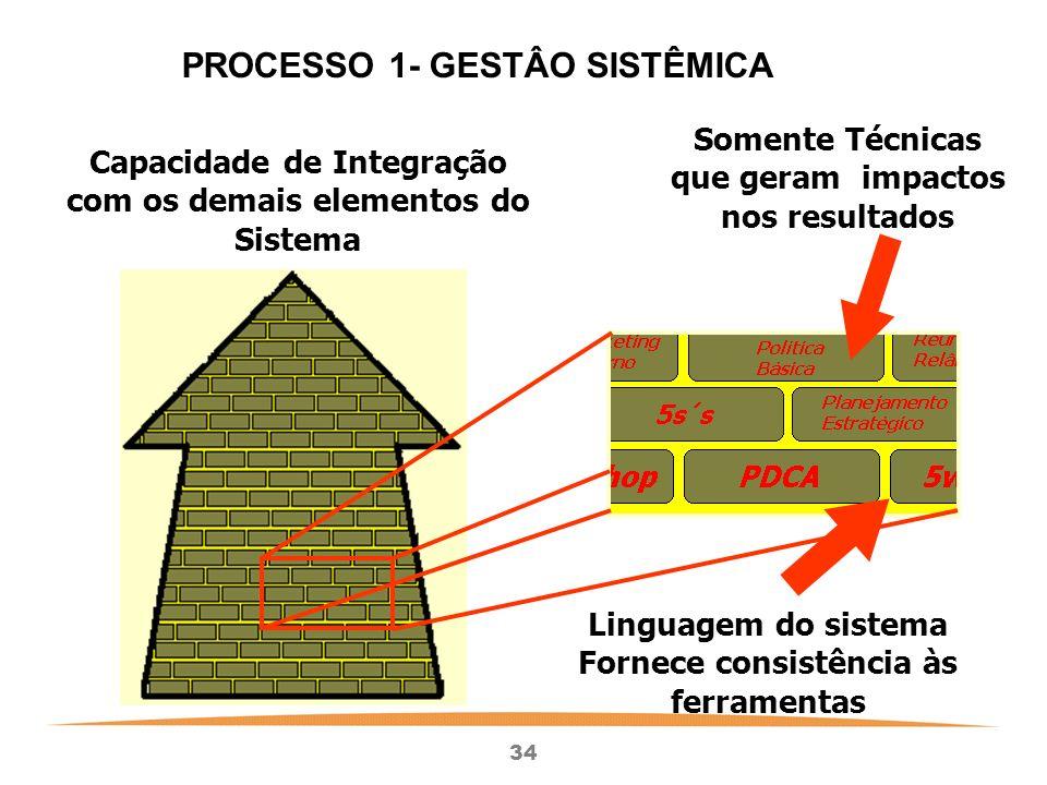 PROCESSO 1- GESTÂO SISTÊMICA