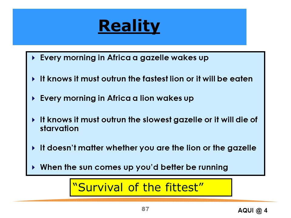 Reality Survival of the fittest