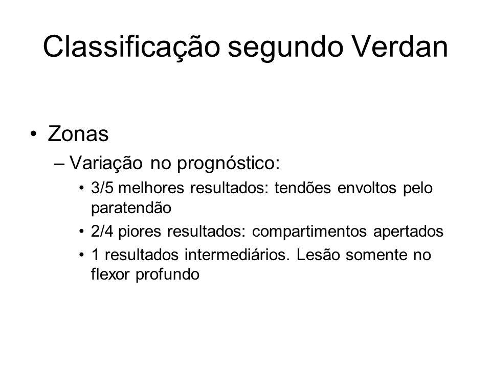 Classificação segundo Verdan