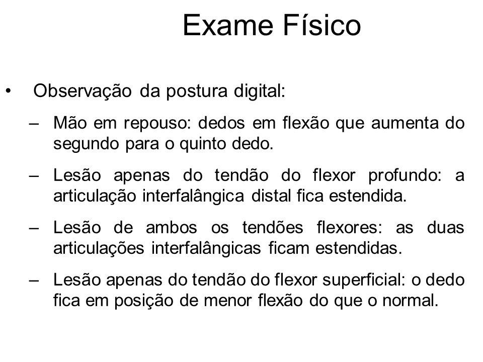 Exame Físico Observação da postura digital: