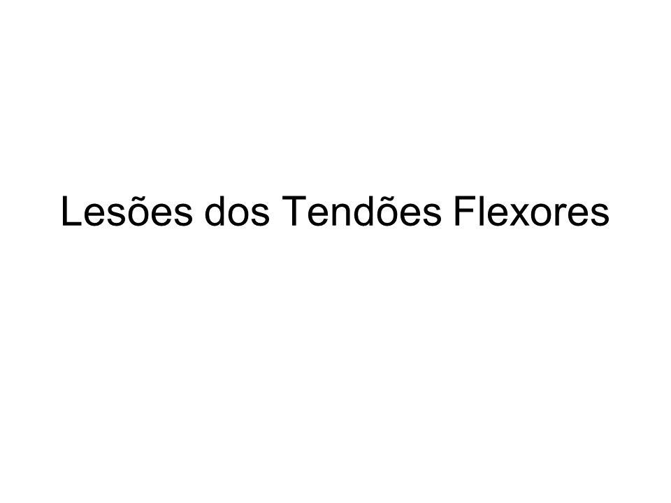 Lesões dos Tendões Flexores