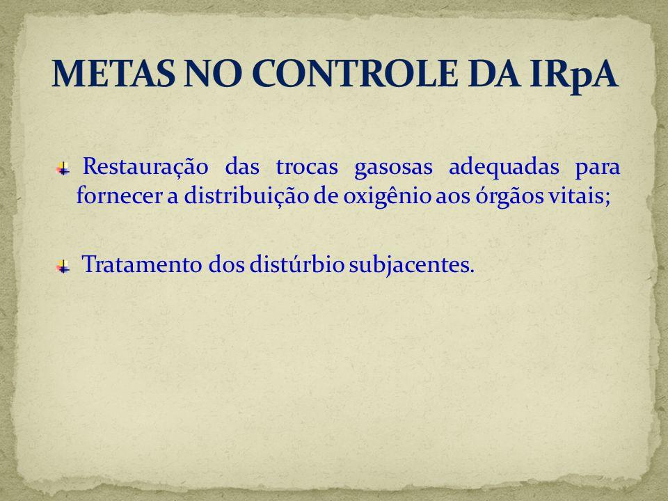 METAS NO CONTROLE DA IRpA