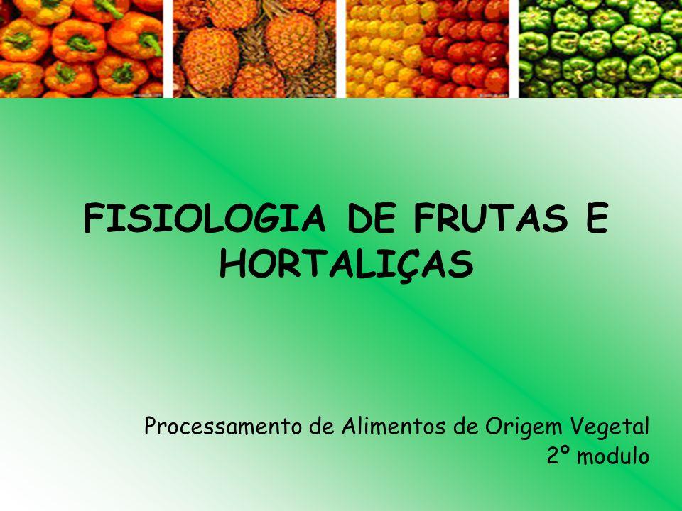 FISIOLOGIA DE FRUTAS E HORTALIÇAS