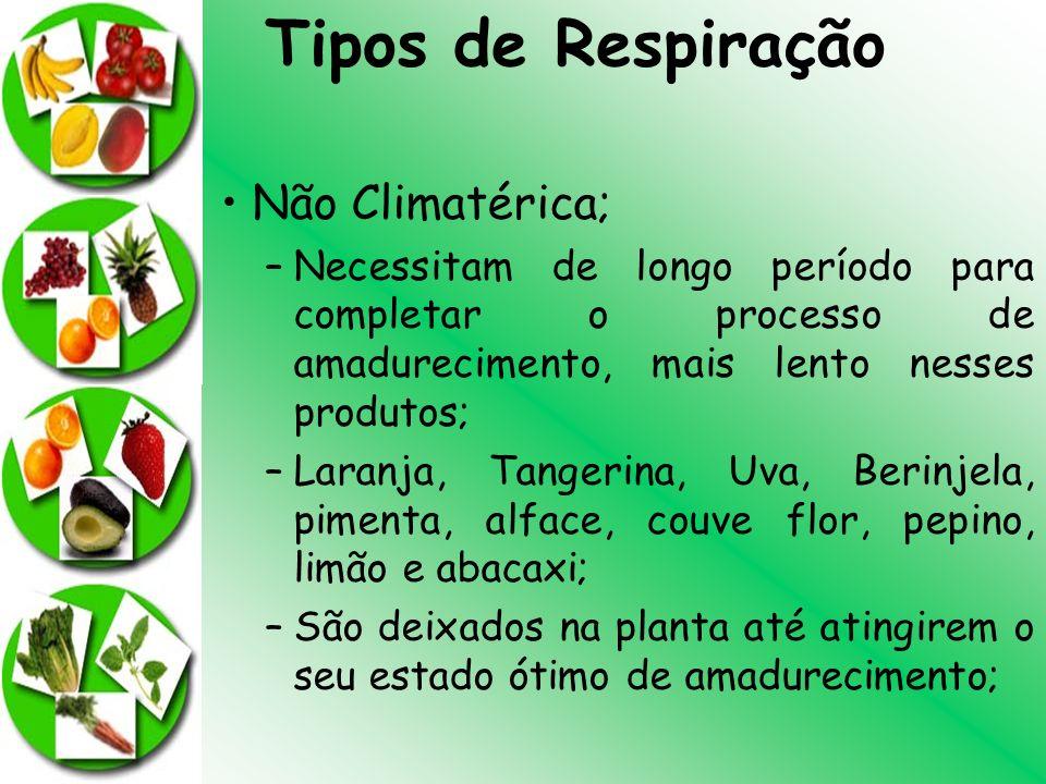 Tipos de Respiração Não Climatérica;
