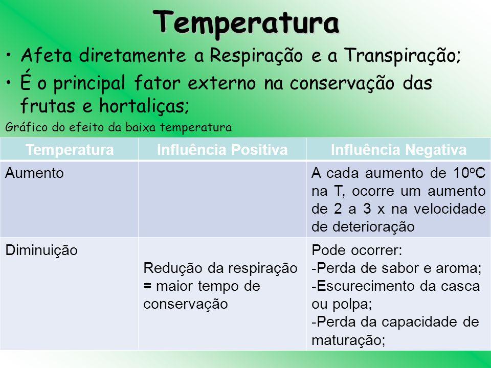 Temperatura Afeta diretamente a Respiração e a Transpiração;