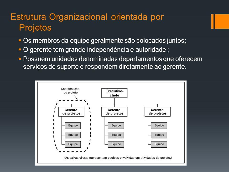 Estrutura Organizacional orientada por Projetos