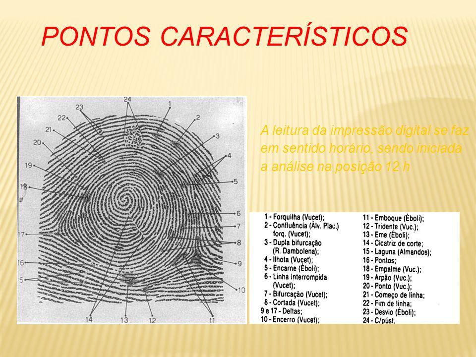 PONTOS CARACTERÍSTICOS