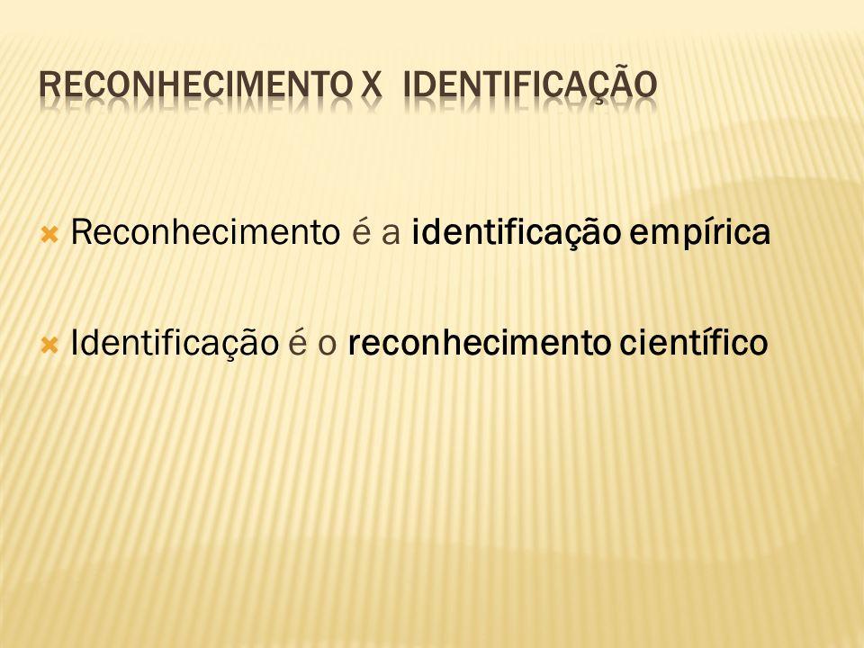 RECONHECIMENTO x IDENTIFICAÇÃO