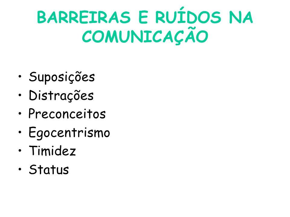 BARREIRAS E RUÍDOS NA COMUNICAÇÃO