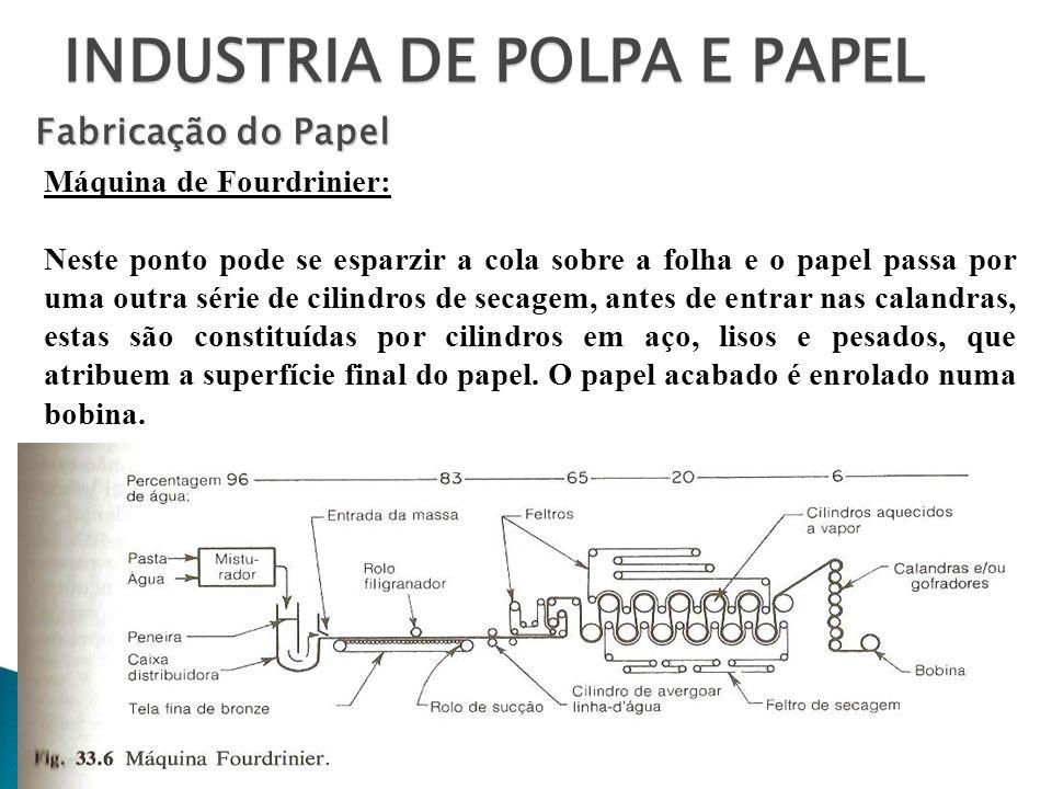 INDUSTRIA DE POLPA E PAPEL