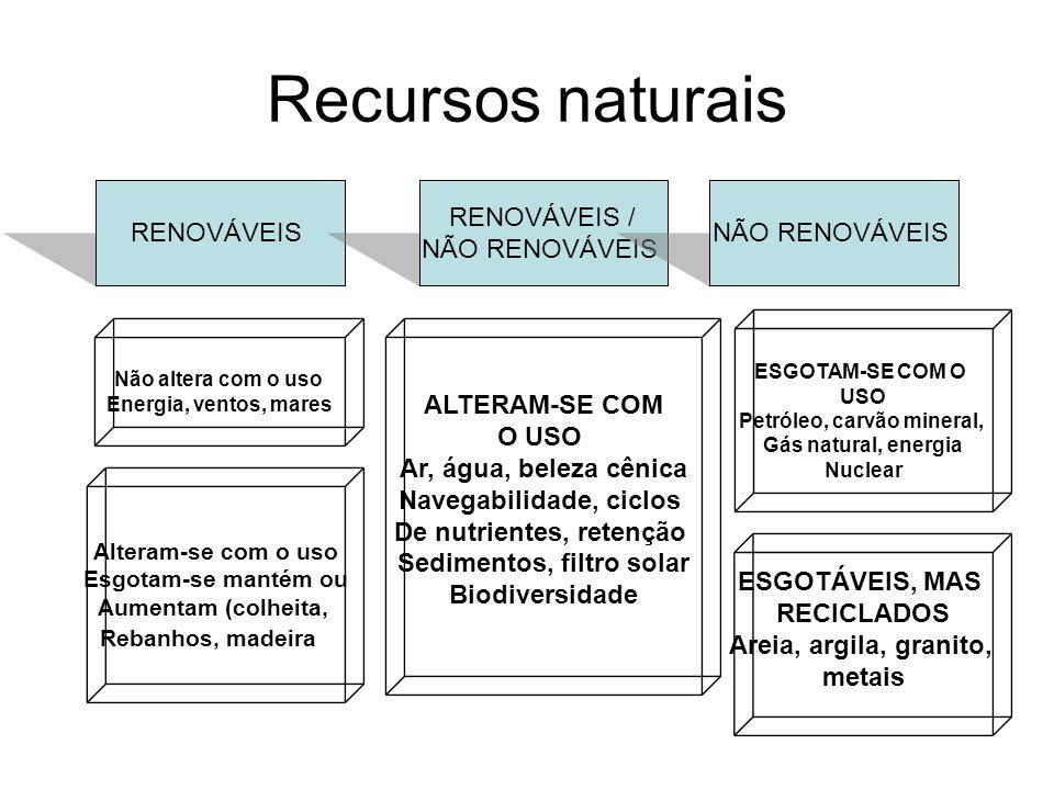 Recursos naturais RENOVÁVEIS RENOVÁVEIS / NÃO RENOVÁVEIS
