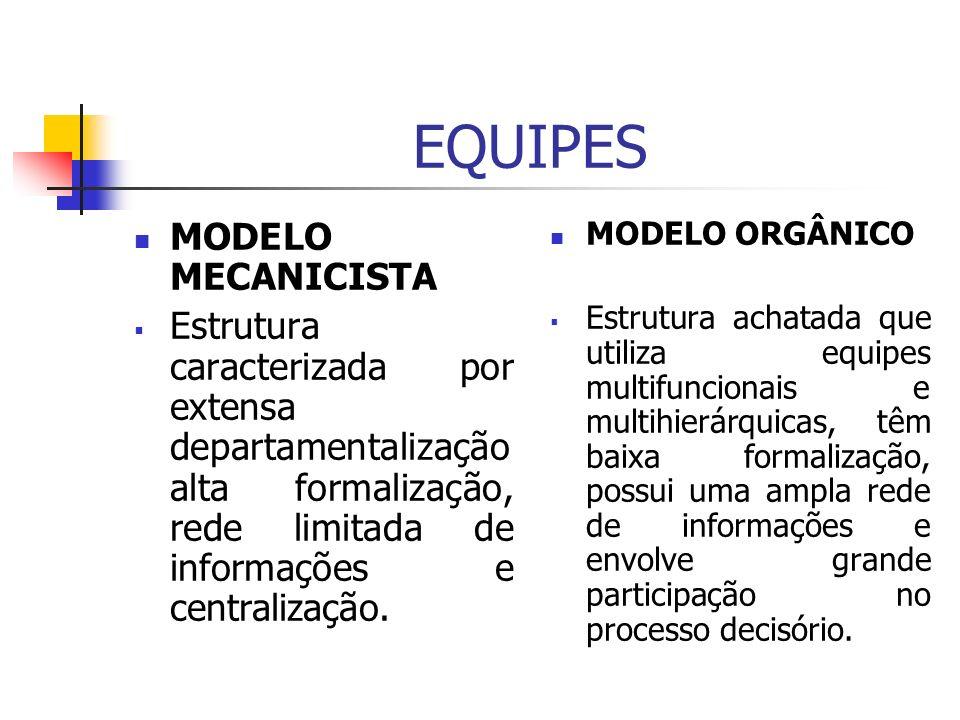 EQUIPES MODELO MECANICISTA