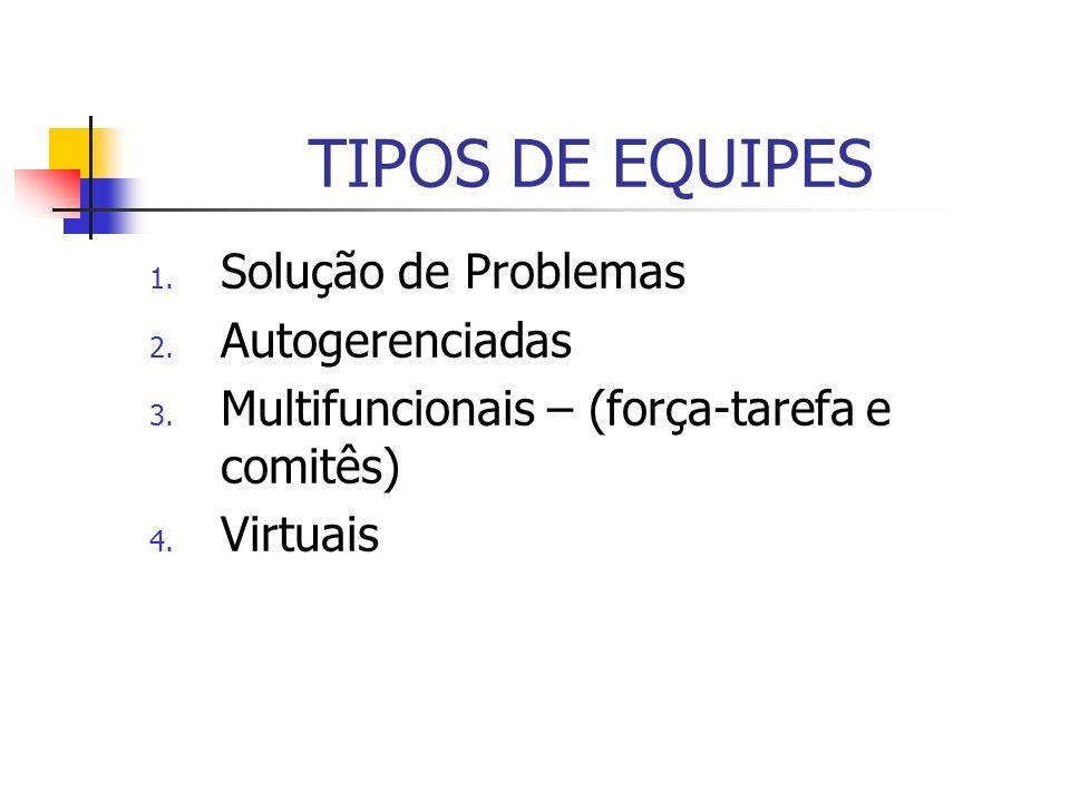 TIPOS DE EQUIPES Solução de Problemas Autogerenciadas
