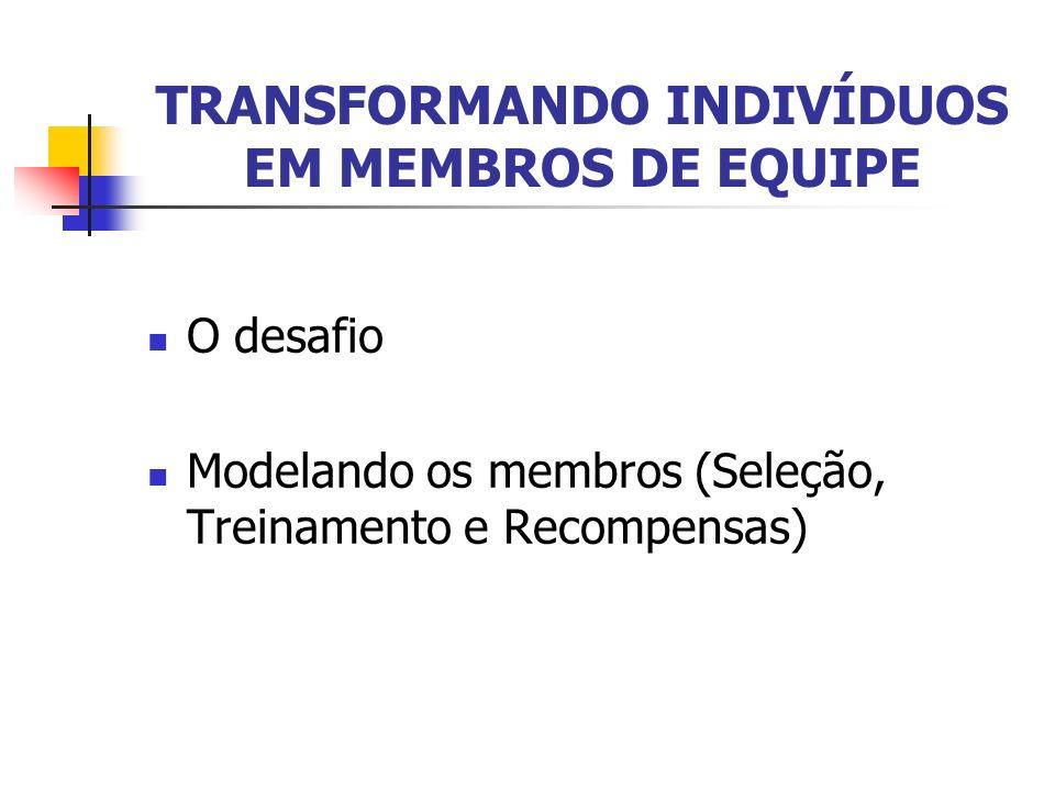 TRANSFORMANDO INDIVÍDUOS EM MEMBROS DE EQUIPE