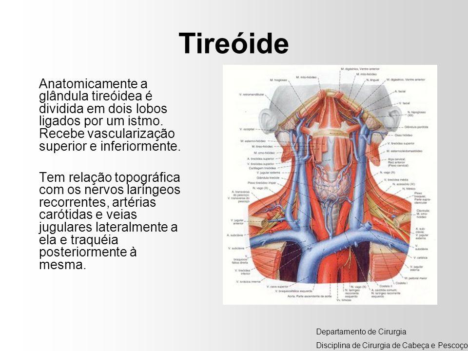 Tireóide Anatomicamente a glândula tireóidea é dividida em dois lobos ligados por um istmo. Recebe vascularização superior e inferiormente.
