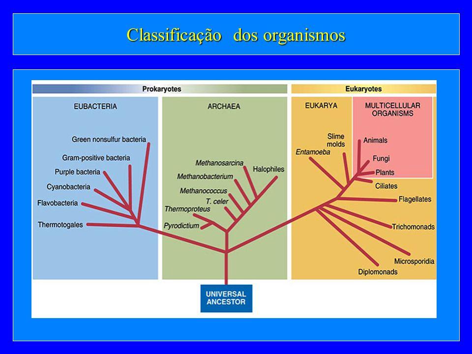 Classificação dos organismos