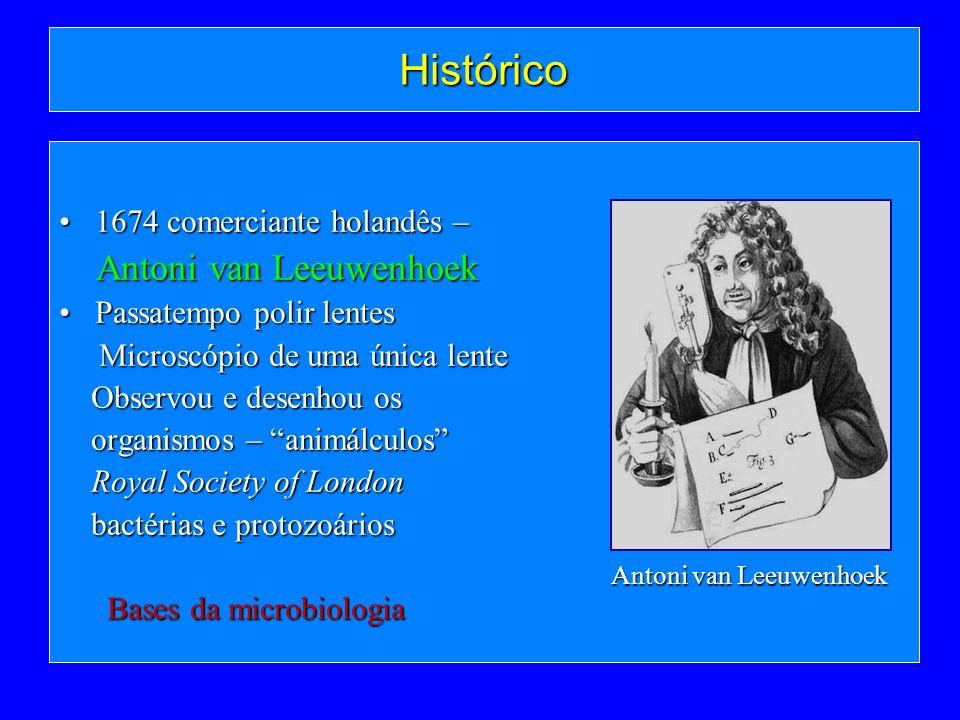 Histórico Antoni van Leeuwenhoek 1674 comerciante holandês –