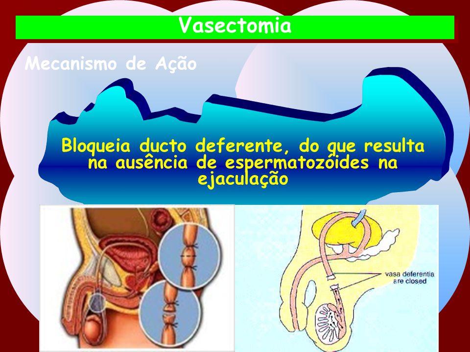 Vasectomia Mecanismo de Ação