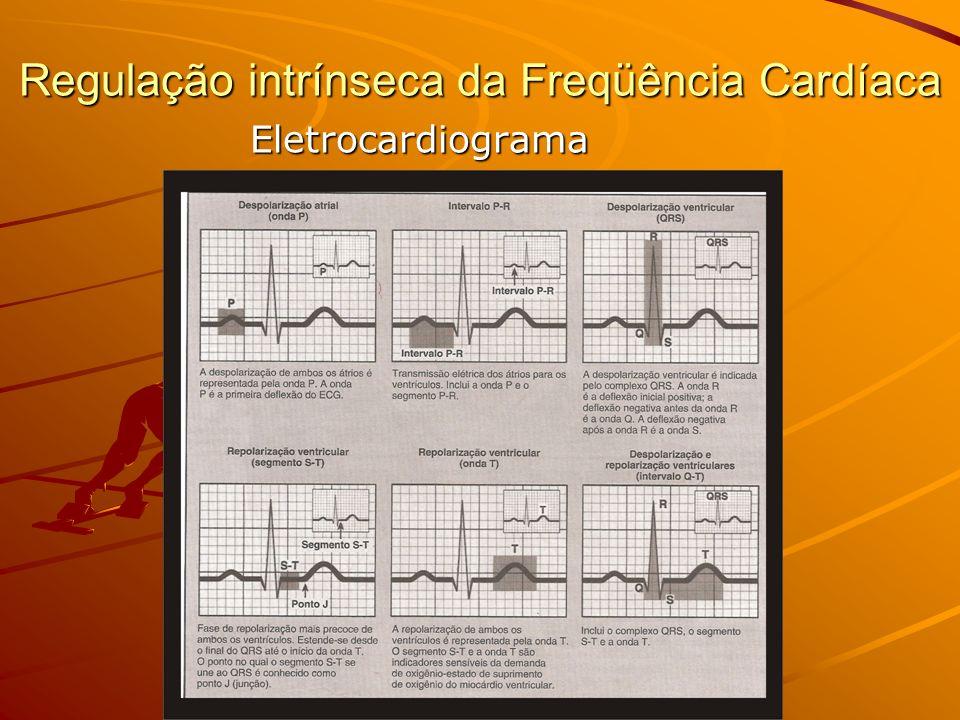 Regulação intrínseca da Freqüência Cardíaca