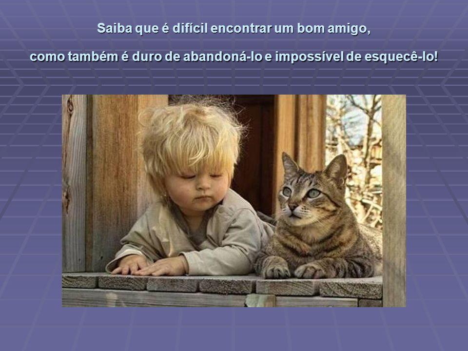 Saiba que é difícil encontrar um bom amigo, como também é duro de abandoná-lo e impossível de esquecê-lo!