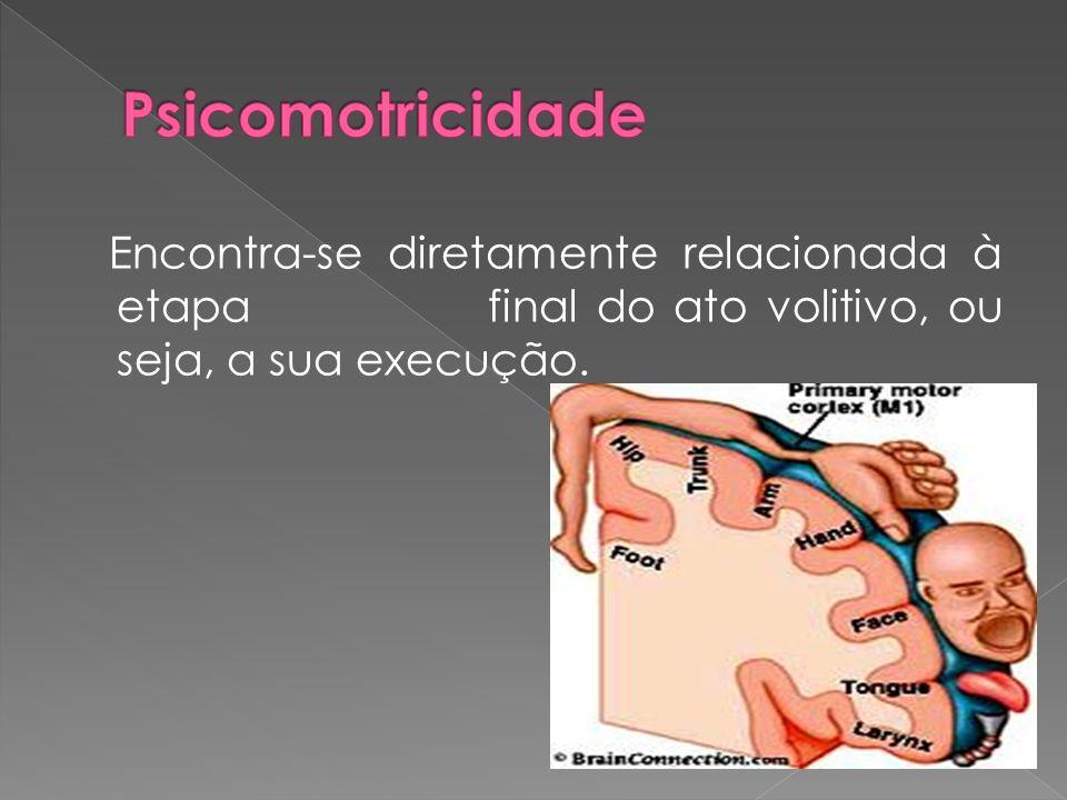 Psicomotricidade Encontra-se diretamente relacionada à etapa final do ato volitivo, ou seja, a sua execução.