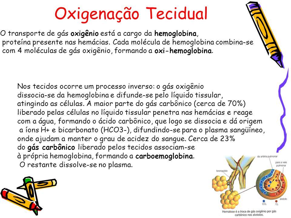 Oxigenação TecidualO transporte de gás oxigênio está a cargo da hemoglobina, proteína presente nas hemácias. Cada molécula de hemoglobina combina-se.